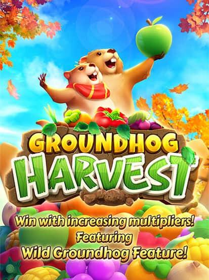 Groundhog Harvest PG